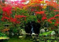 Красочная Япония