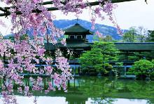 Удивительная страна Япония