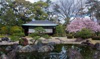 Близкая и далекая Япония